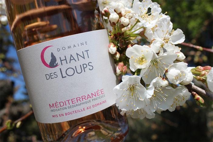bouteille de vin IGP rosé chant des loups à coté d'un arbre en fleur