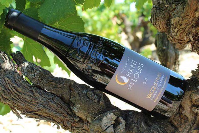Bouteille de vin Vacqueyras rouge BIO du Domaine Chant des Loups posé sur une vigne