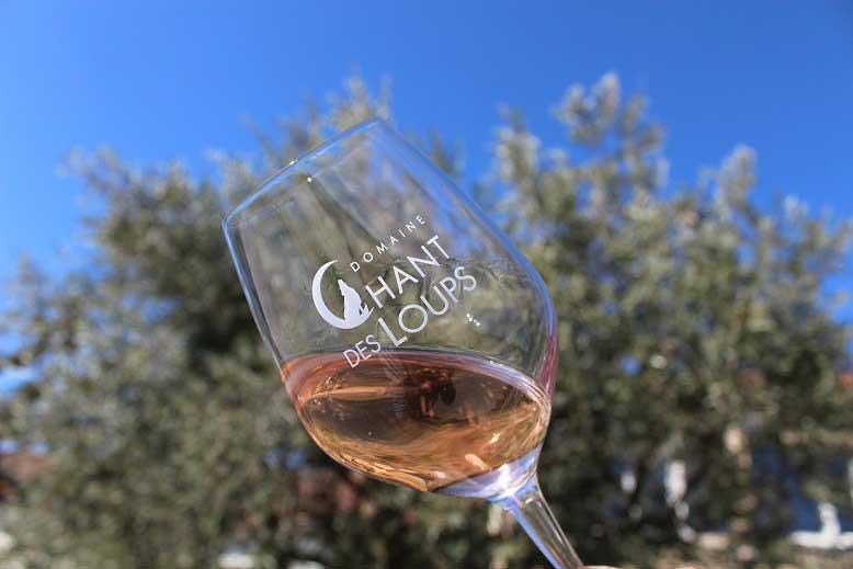 dégustation d'un verre d'IGP rosé devant un olivier et un ciel bleu