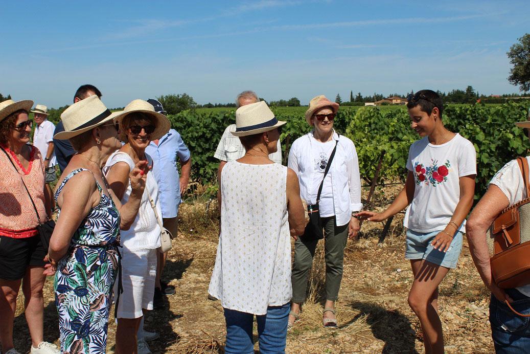 Groupe de visiteurs au cœur des vignes du Domaine Chant des Loups